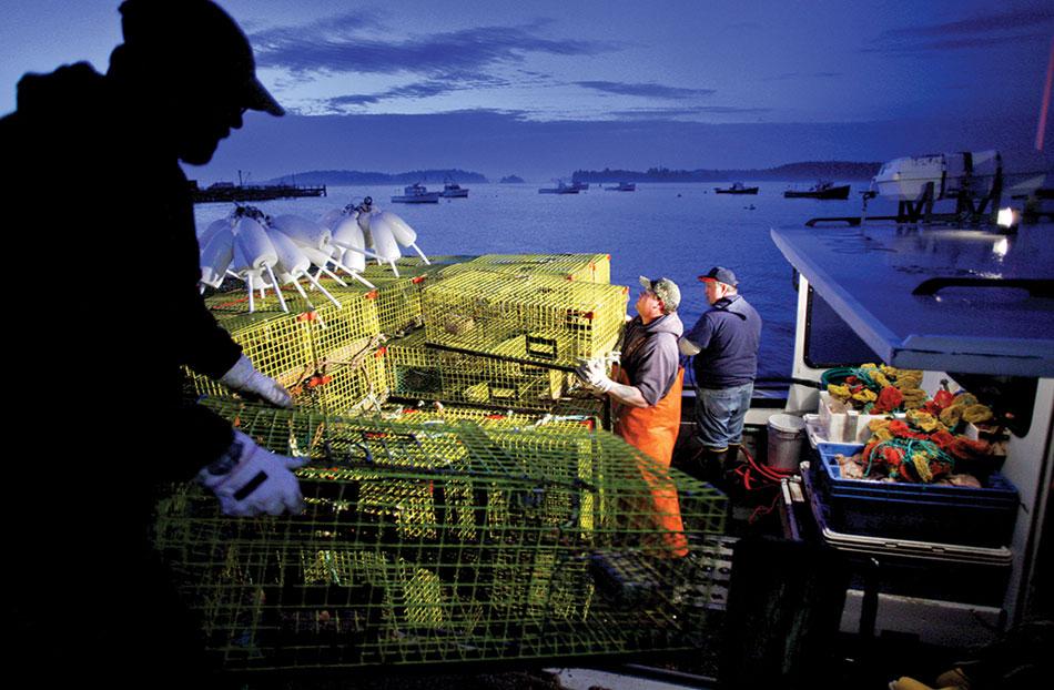 Consider The Lobstermen Vqr Online