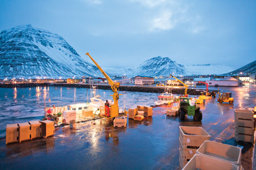 At the dock in Bolungarvik, cranes offload empty fishing lines then boxes of fish for weighing.