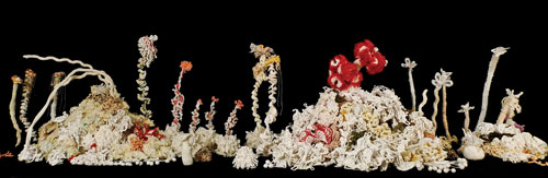 The Bleached Bone Reef features works by some of the project's most technically skilled crafters, including beaded sea creatures by Nadia Stevens, Jill Schreier, Pamela Styles, and Vonda N. McIntyre.