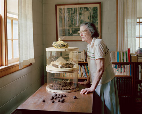 The author's neighbor, Mrs. Daniel, looking out her window.  A container of black walnuts sits on the table before her.