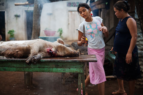 Tanya Martinez Toval, fourteen, and her sister Sulema, twenty-five, butcher a pig to sell in their community.