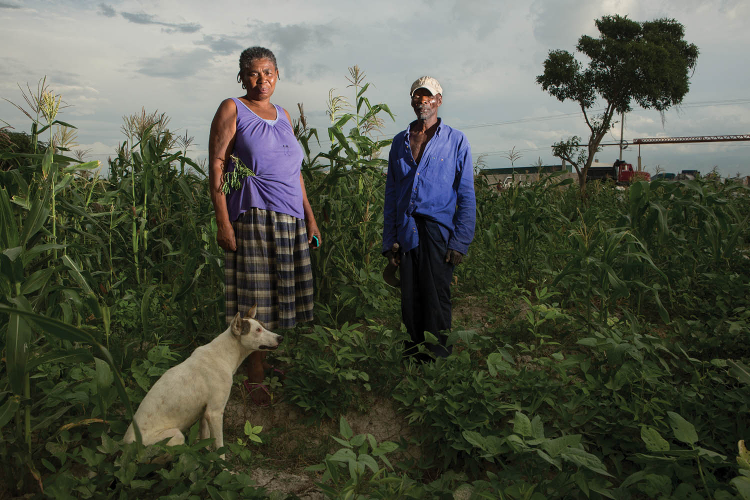 "Jean Leon and her husband, Michelet Alexandre, in their field near Corail. They arrived in 1996, when there were only three families in the area. Now their property, where they grow crops and raise cattle, is surrounded by a fast-developing neighborhood. ""We came from the countryside to find life, and we certainly found life,"" says Leon. Photo by Allison Shelley"