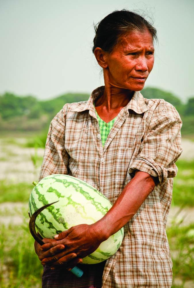 Irrawaddy Daze  3d6633f3e