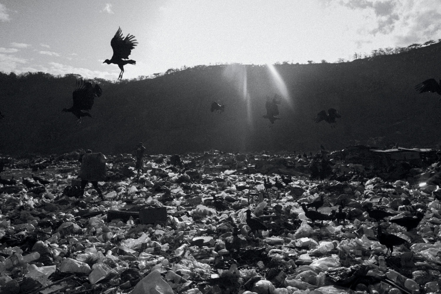 Photograph by Fabiola Ferrero. A garbage dump located on the outskirts of Caracas. Following the country's severe food shortage, more and more families search for food scraps here.