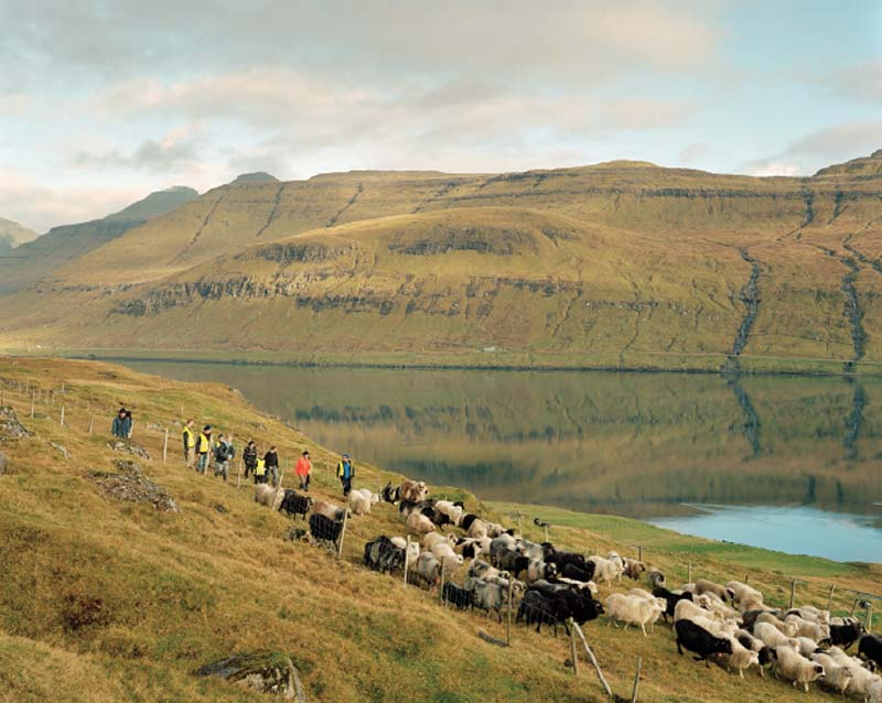 Shepherds in Skálabotnur