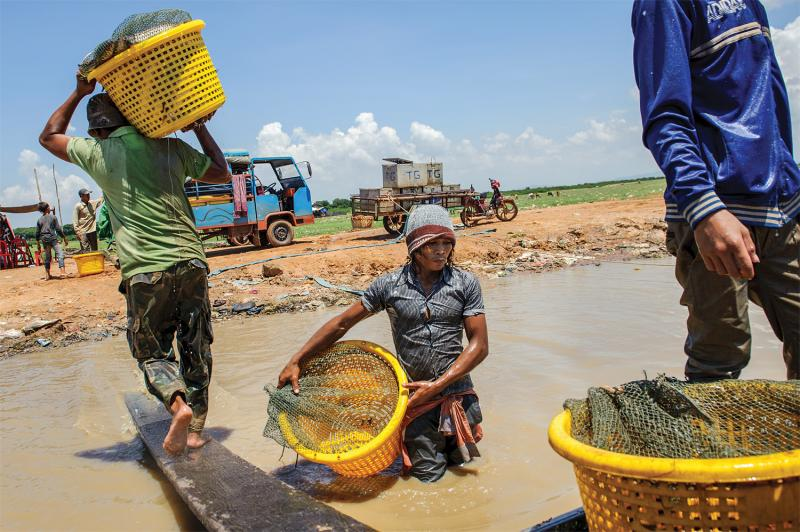 Fishermen in Kampong Luong haul fish to vehicles headed to nearby markets. (Luc Forsyth/Ruom)