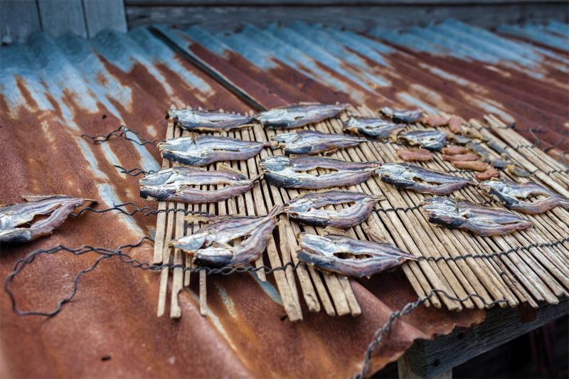 Fish drying on a rooftop in Pat Sonday village, Kampong Chhnang. (Thomas Cristofoletti/Ruom)