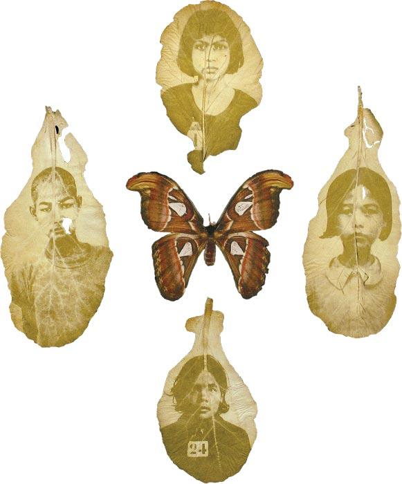 Binh Danh, <i>Ancestral Altar #20</i>. Photographic negative on leaf.