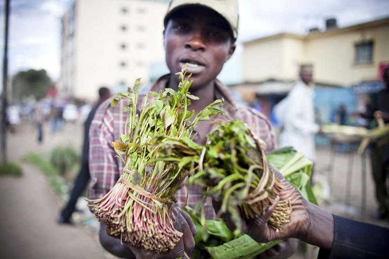 So many Somalis, like this khat dealer, have moved to Eastleigh it has been nicknamed Little Mogadishu.