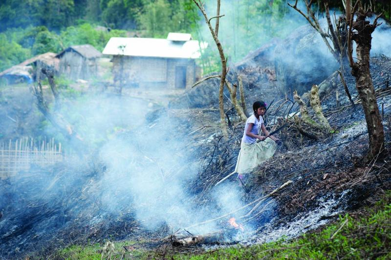 A young girl chops down charred stumps in a recently burned field with a long steel knife called a dao, the same kind of knife the headhunters used to chop off enemy heads.