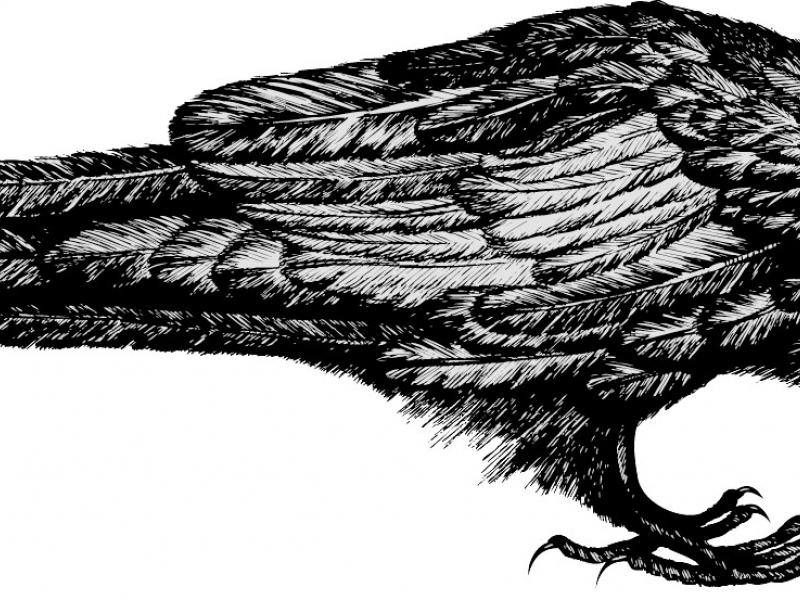 the twa corbies