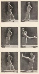 J.P. Müller, photographs from My System, 1904.